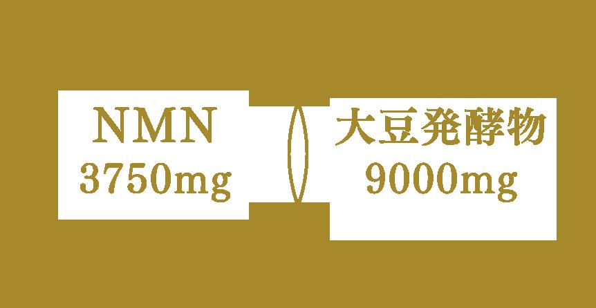 NMN×大豆発酵物